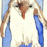 Pinguin blau Nr. 1 - Zeichnung von Susanne Haun - Tusche auf Bütten - 11 x 7,5