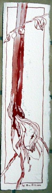 Amaryllis - Zeichnung von Susanne Haun - Tusche auf Leonardo Bütten - 35 x 9 cm