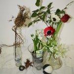 Blumenstück (c) Foto von Susanne Haun