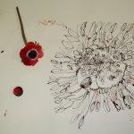 Entstehung einer rote Blume (c) Zeichnung von Susanne Haun (4)