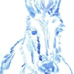 Esel (c) Radierung von Susanne Haun
