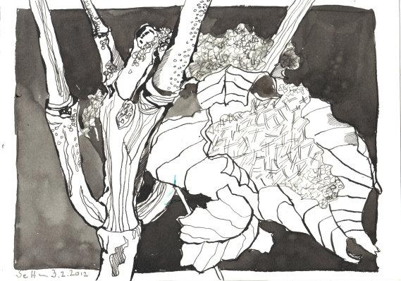 Stöckchen Nr 1 17 x 22 cm Tusche auf Burgund Bütten (c) Zeichnung von Susanne Haun