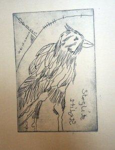 Probedruck der Platte (c) Strickradierung auf Hahnemühle Kupferdruckpapier von Susanne Haun