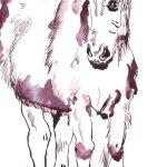 Pferd Version 1 Tusche auf Bütten 34 x 22 cm (c) Zeichnung von Susanne Haun