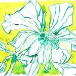 Eine Farbe Gelb 17 x 22 cm Tusche auf Bütten Version 2 (c) Zeichnung von Susanne Haun (3)