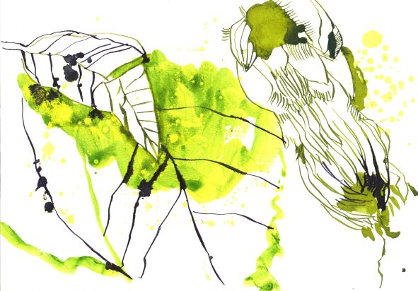 Eine Farbe Gelb 17 x 22 cm Tusche auf Bütten Version 3 (c) Zeichnung von Susanne Haun (2)