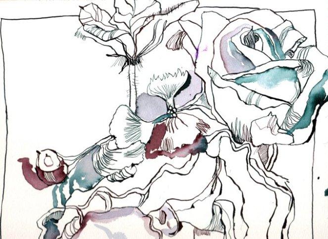 Ausschnitt Helena von Troja 30 x 40 cm Tusche auf Bütten (c) Zeichnung von Susanne Haun