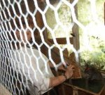 Mehr Gitter als ich und Chinchilla (c) Foto von Conny Niehoff