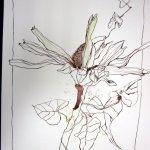 Umschlungen Version 1 Zeichnung auf Bütten 50 x 60 cm (c) Zeichnung von Susanne Haun