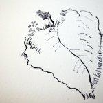 Kürbisfrau (c) Ausschnitt Zeichnung Susanne Haun