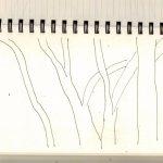 Konstellation Bäume - Beziehungen - Zeichnung von Susanne Haun