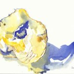 Halber Pfirsich (c) Zeichnung von Susanne Haun