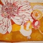 Herbstblumen 24 x 32 cm Tusche auf Bütten (c) Zeichnung von Susanne Haun