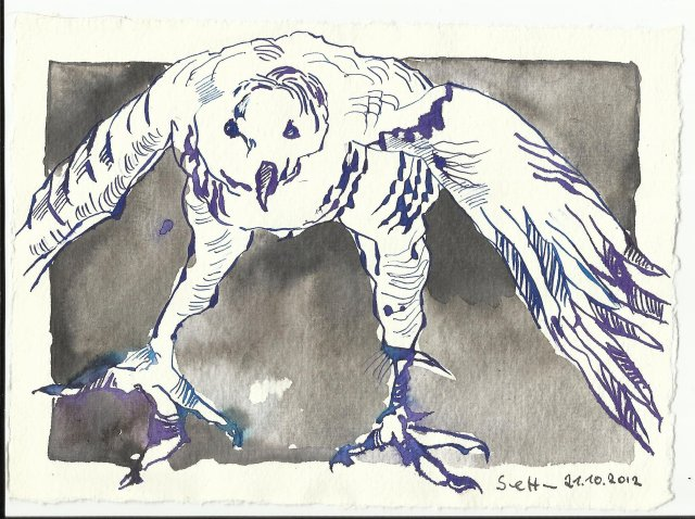 Blatt 17 Adler (c) Zeichnung von Susanne Haun
