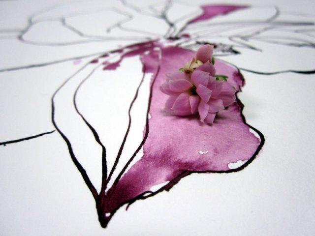Detail Zeichnung mit Blüte (c) Foto von Susanne Haun