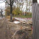 Die Bäume werden beim Bau geschützt (c) Foto von Susanne Haun
