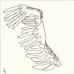 larence bekommt Flügel 9teilig (c) Zeichnung von Susanne Haun 1