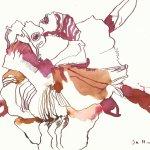 Vanitas - erfrorene Azalee 17 x 22 cm Tusche auf Bütten(c) Zeichnung von Susanne Haun