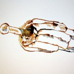 1 Entstehung Windblume (c) Zeichnung von Susanne Haun