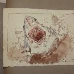 24 Ein sehr großer Makohai (c) Zeichnung von Susanne Haun