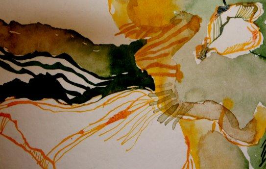 Detail  -  Das Innere der Primel (c) Zeichnung  von Susanne Haun