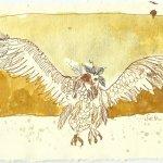 Blatt 101 Ein großer Vogel (Entstehung) (c) Zeichnung von Susanne Haun