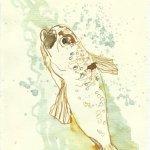 Blatt 81 Weine fliessen Fische zucken (c) Zeichnung von Susanne Haun