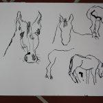 Pferde (c) Zeichnung von Susanne Haun