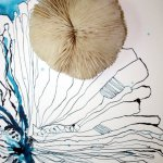 Detail versteinerte Koralle (c) Zeichnung von Susanne Haun