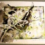 Laubheuschrecke - 30 x 40 cm (c) Zeichnung von Susanne Haun