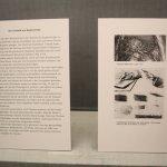 Einblick in die Ausstellung Albrecht Dürer - 500 Jahre Meiserstiche (c) Foto von Susanne Haun