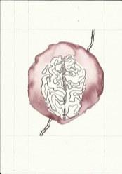 Dialog Bewusst-Sein Blatt 8 Vers. 3 (c) Zeichnung von Susanne Haun