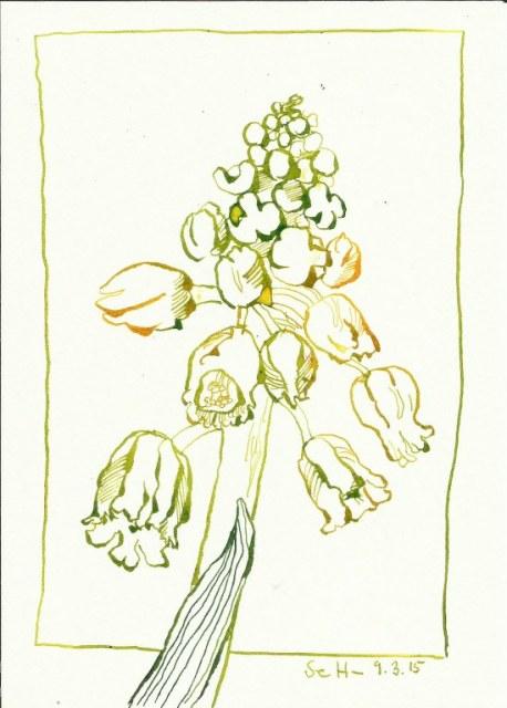 Blumen - Tusche auf Bütten - 17 x 24 cm (c) Zeichnung von Susanne Haun