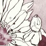 Die Sprache der Blumen (c) Zeichnung von Susanne Haun
