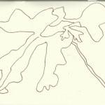 Nasses Grün (c) Zeichnung von Susanne Haun 0002