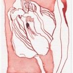 Tulpe - 15 x 10 cm (c) Zeichnung von Susanne Haun