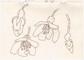 1. Skizzenbuch London (c) Zeichnung von Susanne Haun(11)