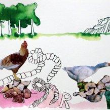 5 Regenwurm – 30 x 40 cm – Tusche auf Bütten (c) Zeichnung – Collage von Susanne Haun