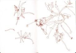 Rhododendron (c) Zeichnung von Susanne Haun