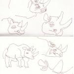 Im Zoo - Nashörner (c) Zeichnung von Susanne Haun