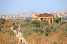 Überblick Parco valle dei templi agrigento (c) Foto von Susanne Haun