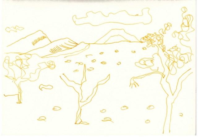 Namib Wueste (c) Zeichnung von Susanne Haun
