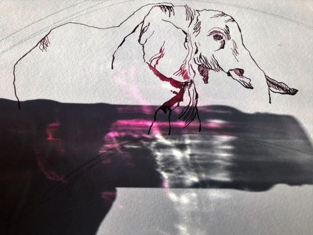 Afrika verarbeiten - Elefanten im Tuscheglas (c) Foto bzw. Zeichnung von Susanne Haun