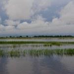 Das Delta Botswanas in seiner gesamten Schönheit (c) Foto von M.Fanke