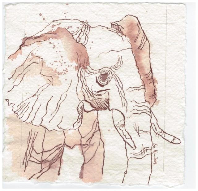 Elefant, 15 x 15 cm, Tusche auf Silberburg Büttenpapier, Zeichnung von Susanne Haun (c) VG Bild-Kunst, Bonn 2019