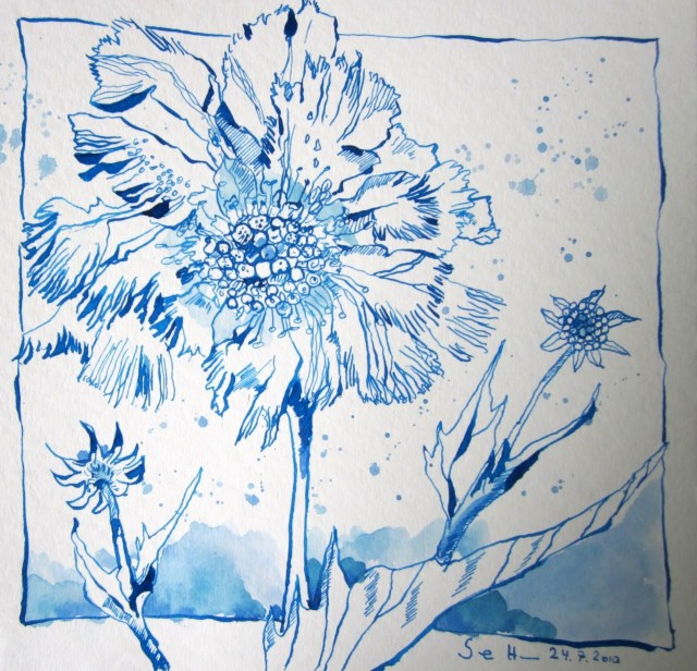 Blaue Blume, 20 x 20 cm, Tusche auf Aquarellkarton,Zeichnung von Susanne Haun (c) VG Bild-Kunst, Bonn 2019