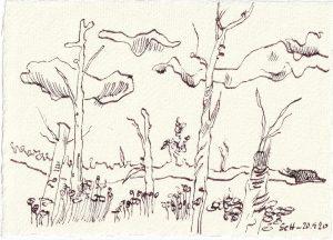 Tagebucheintrag 20.09.2020, Im Moor, 20 x 15 cm, Tinte und Buntstift auf Silberburg Büttenpapier, Zeichnung von Susanne Haun (c) VG Bild-Kunst, Bonn 2020