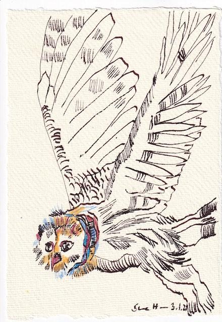 Tagebucheintrag 03.01.2021, Flieg Eule, flieg, 20 x 15 cm, Tinte und Aquarell auf Silberburg Büttenpapier, Zeichnung von Susanne Haun (c) VG Bild-Kunst, Bonn 2021
