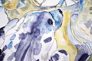 Detail, Grey Seals, Kegelrobben, Gemeinsam sind wir stark, Zeichnung von Susanne Haun, 50 x 65 cm, Tusche auf Aquarellkarton (c) VG Bild-Kunst, Bonn 2021