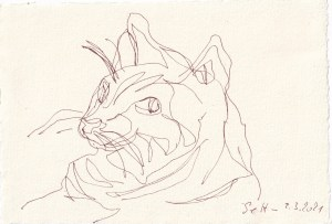 Tagebucheintrag 09.03.2021, Katzen Bewegung, Version 4, 20 x 15 cm, Tinte auf Silberburg Büttenpapier, Zeichnung von Susanne Haun (c) VG Bild-Kunst, Bonn 2021